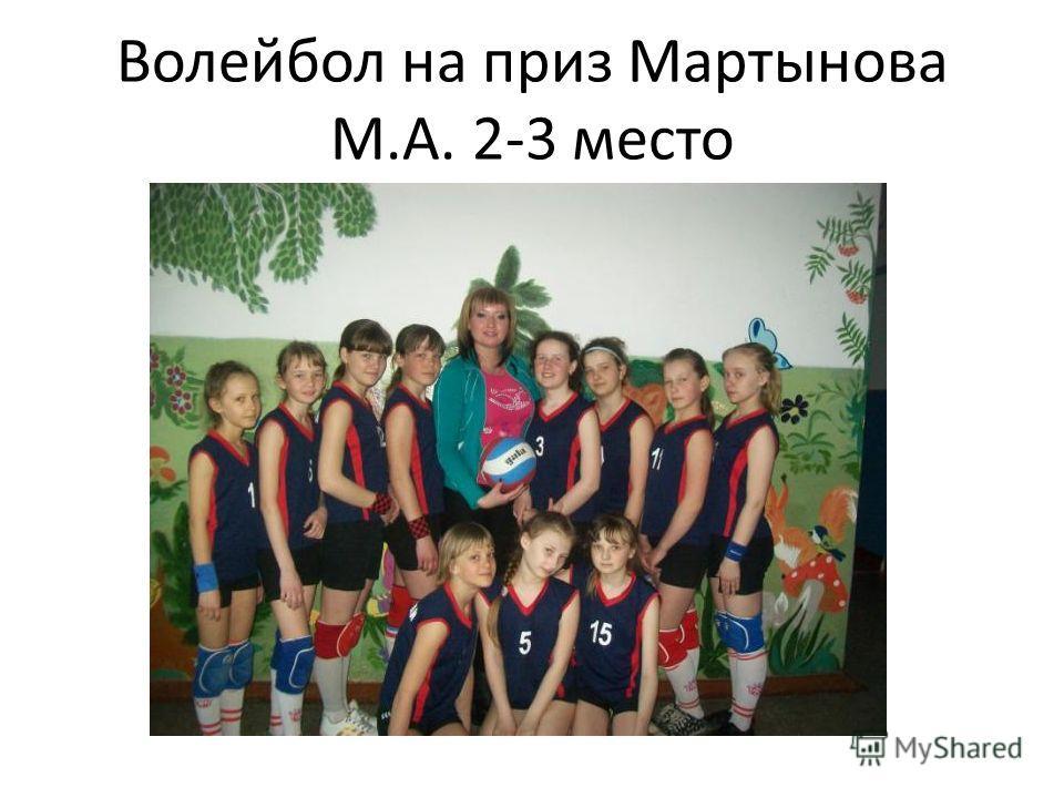 Волейбол на приз Мартынова М.А. 2-3 место