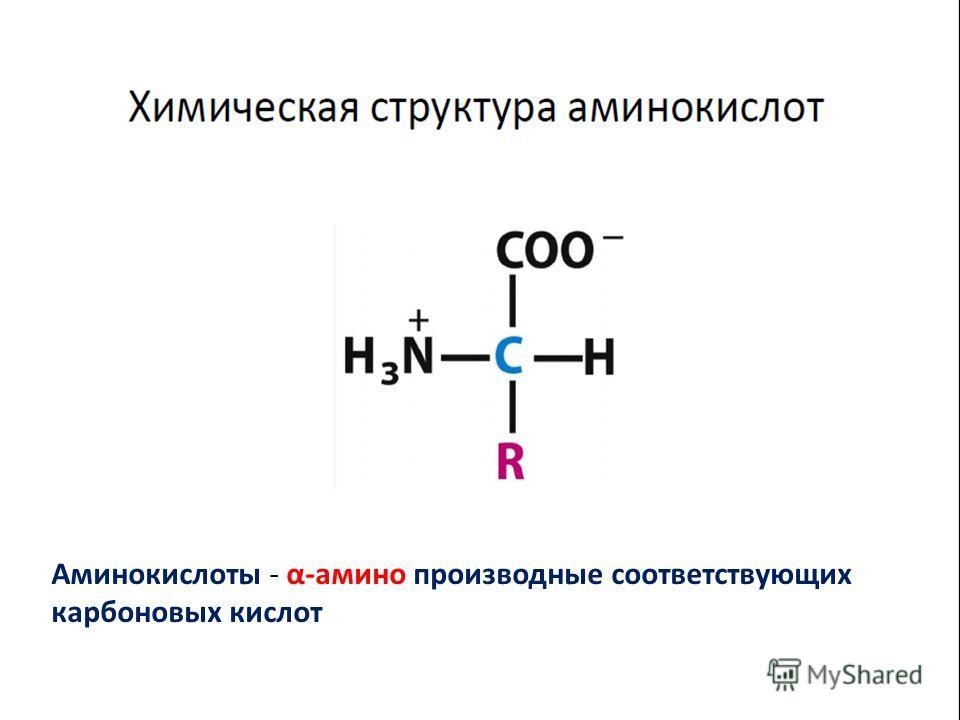 Аминокислоты - α-амино производные соответствующих карбоновых кислот