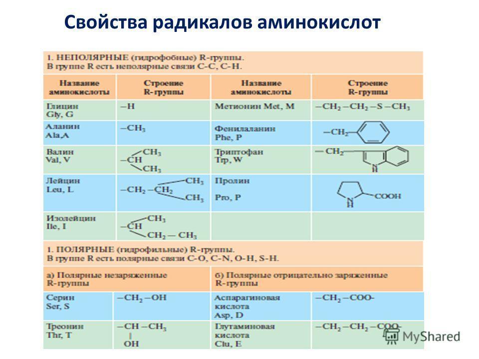 Свойства радикалов аминокислот
