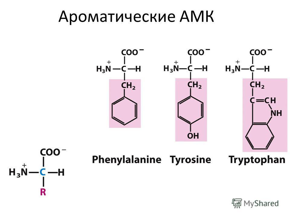 Ароматические АМК
