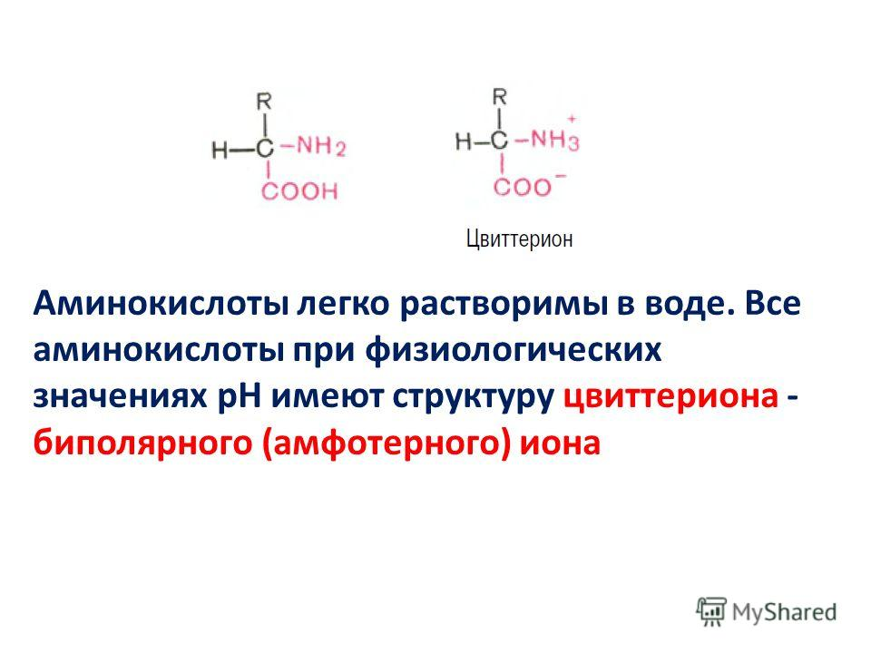 Аминокислоты легко растворимы в воде. Все аминокислоты при физиологических значениях рН имеют структуру цвиттериона - биполярного (амфотерного) иона
