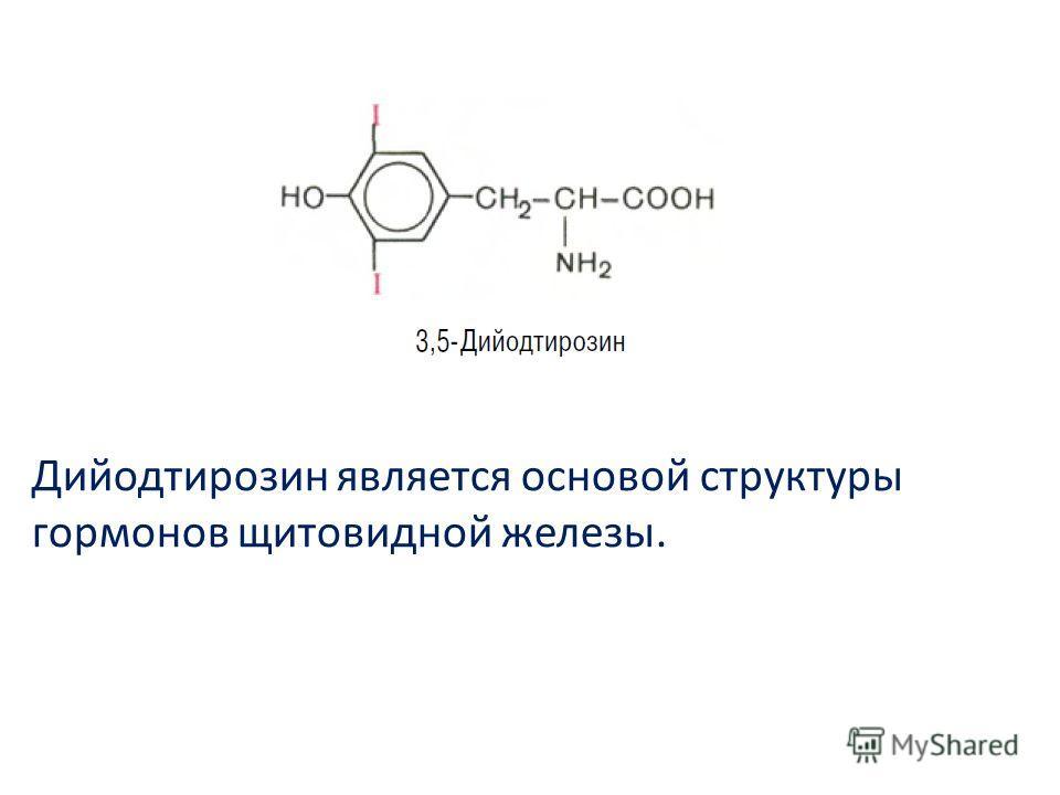 Дийодтирозин является основой структуры гормонов щитовидной железы.
