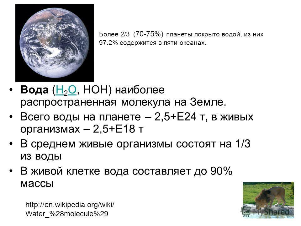 Вода (H 2 O, HOH) наиболее распространенная молекула на Земле.H O Всего воды на планете – 2,5+Е24 т, в живых организмах – 2,5+Е18 т В среднем живые организмы состоят на 1/3 из воды В живой клетке вода составляет до 90% массы Более 2/3 ( 70-75%) плане