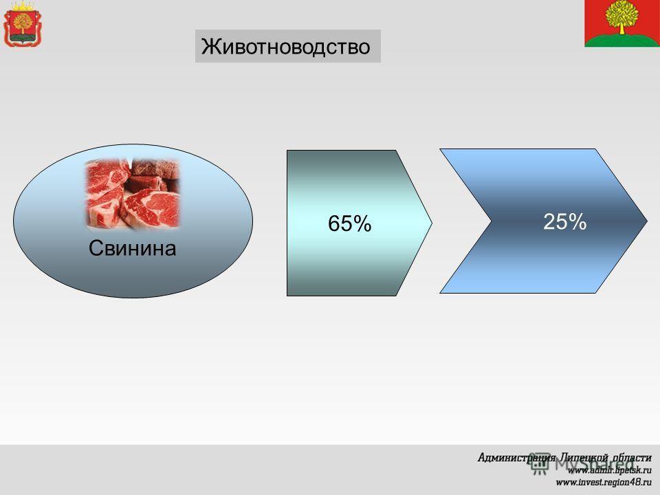 Животноводство Свинина 65% 25%