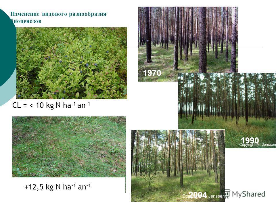 Изменение видового разнообразия биоценозов CL = < 10 kg N ha -1 an -1 +12,5 kg N ha -1 an -1 1970 1990 2004