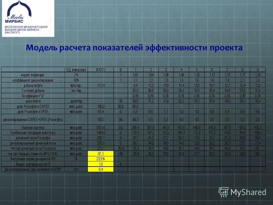 Модель расчета показателей эффективности проекта