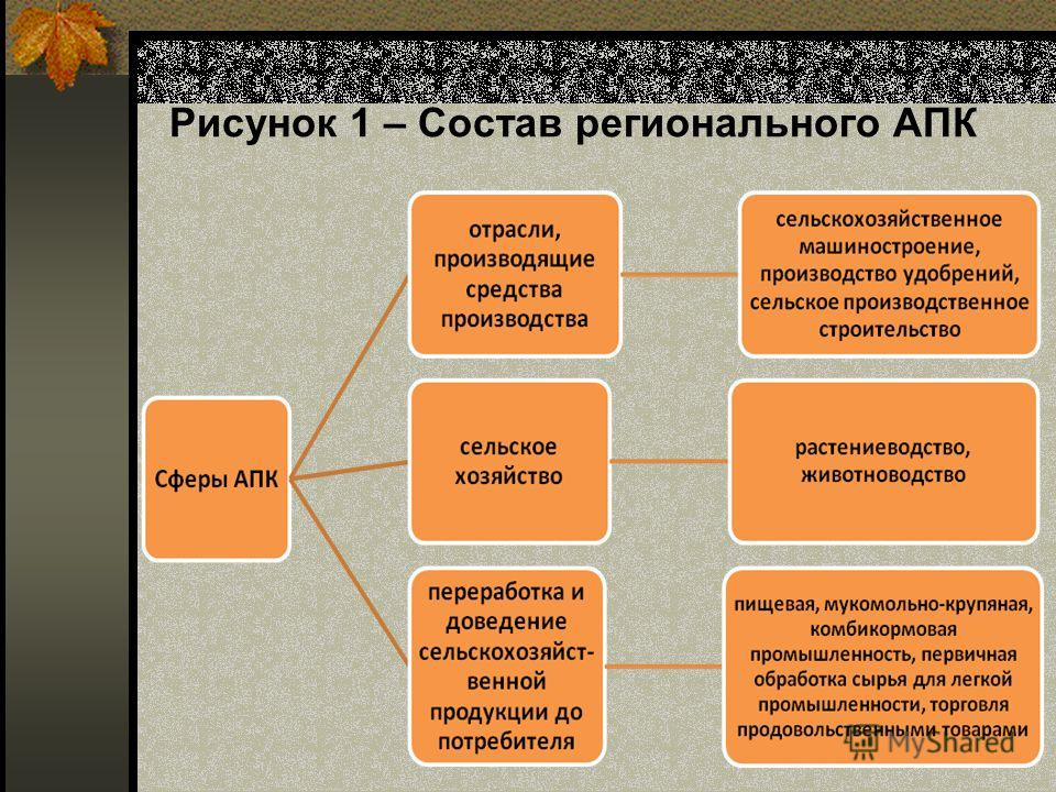 Рисунок 1 – Состав регионального АПК