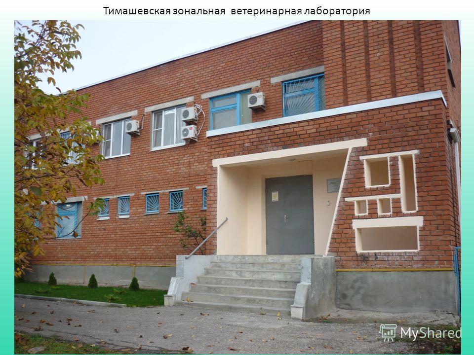 Тимашевская зональная ветеринарная лаборатория