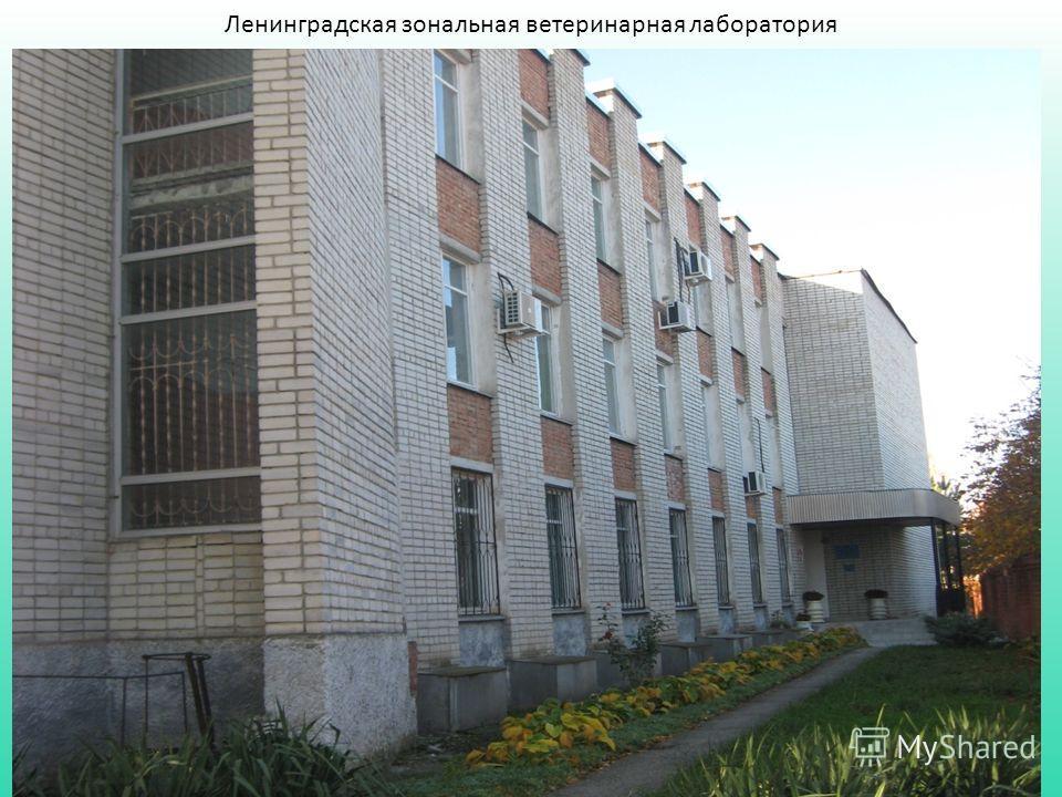 Ленинградская зональная ветеринарная лаборатория