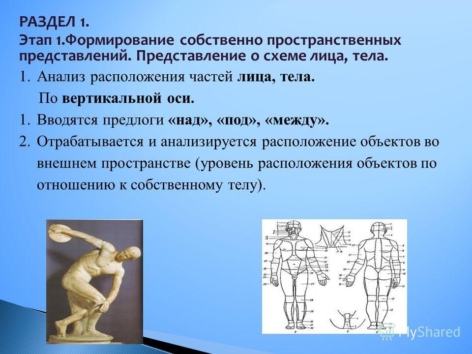 1.Анализ расположения частей лица, тела. По вертикальной оси. 1.Вводятся предлоги «над», «под», «между». 2.Отрабатывается и анализируется расположение объектов во внешнем пространстве (уровень расположения объектов по отношению к собственному телу).