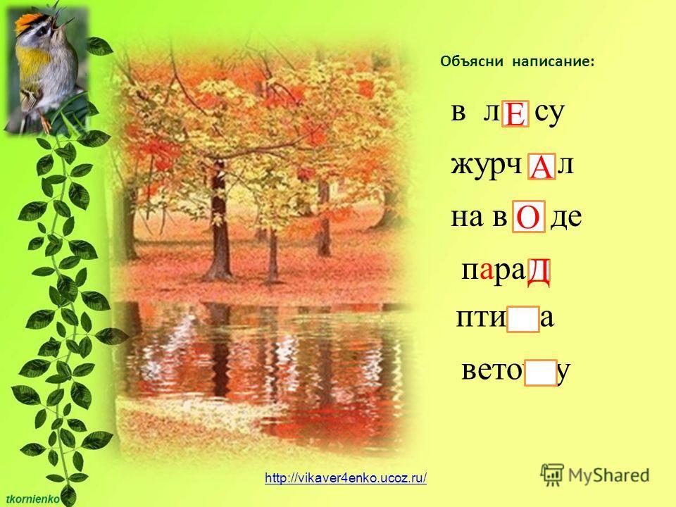 Объясни написание: в л су Е журч л A на в де О пара Д птичка веточку http://vikaver4enko.ucoz.ru/