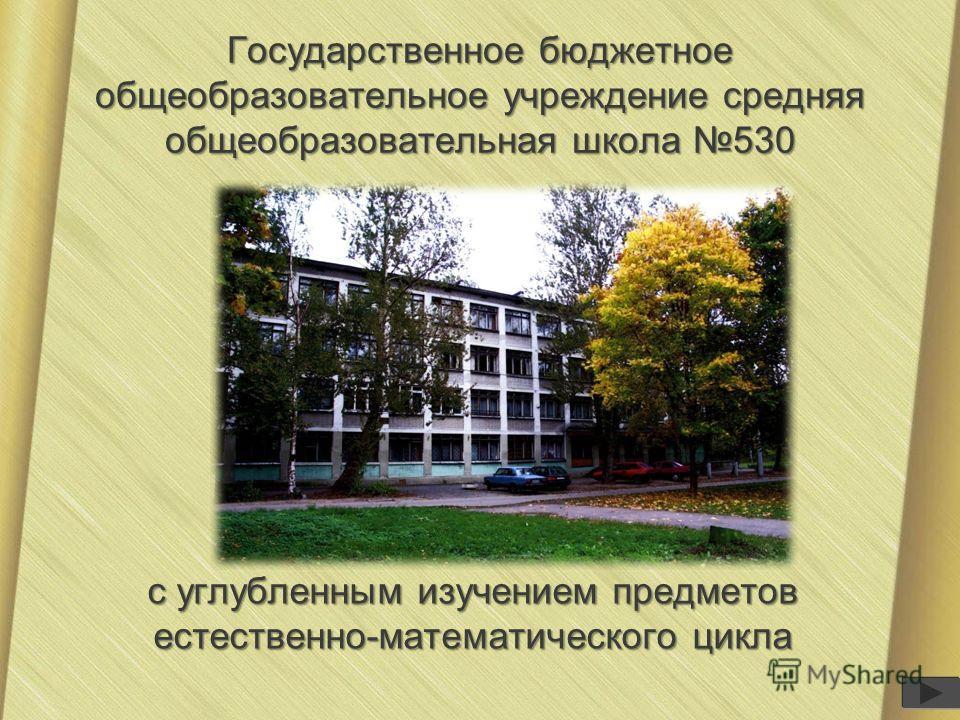 Государственное бюджетное общеобразовательное учреждение средняя общеобразовательная школа 530 с углубленным изучением предметов естественно-математического цикла