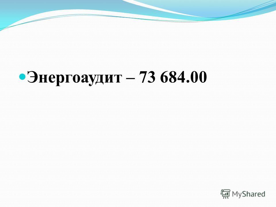 Энергоаудит – 73 684.00