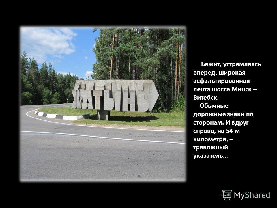 Бежит, устремляясь вперед, широкая асфальтированная лента шоссе Минск – Витебск. Обычные дорожные знаки по сторонам. И вдруг справа, на 54-м километре, – тревожный указатель…