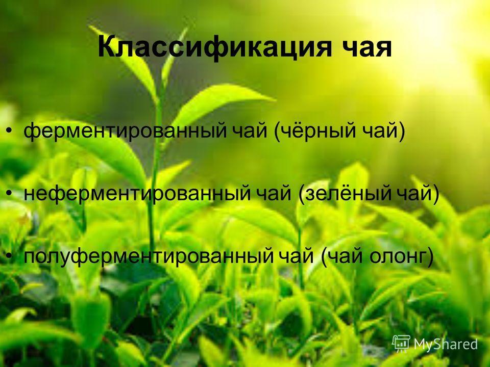 Классификация чая ферментированный чай (чёрный чай) неферментированный чай (зелёный чай) полуферментированный чай (чай олонг)