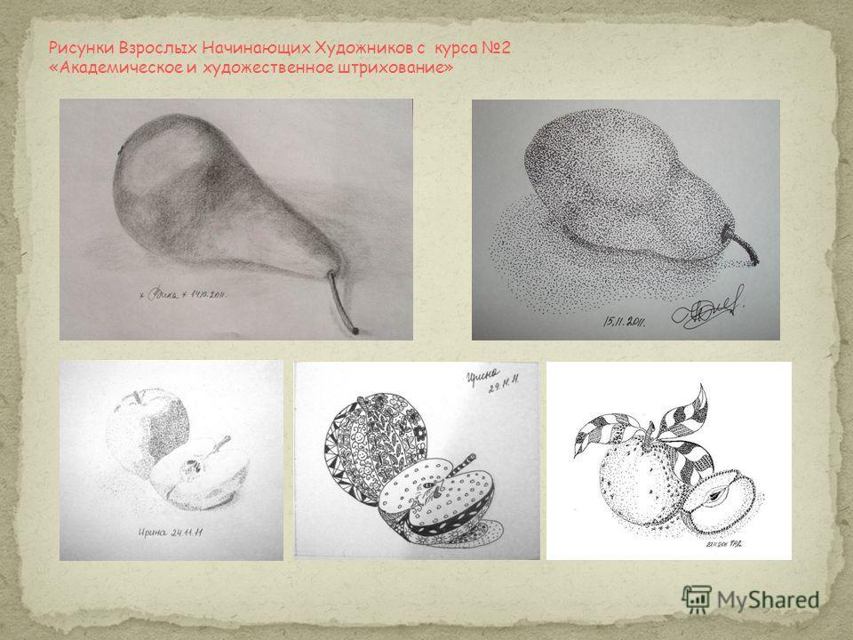 Рисунки Взрослых Начинающих Художников с курса 2 «Академическое и художественное штрихование»