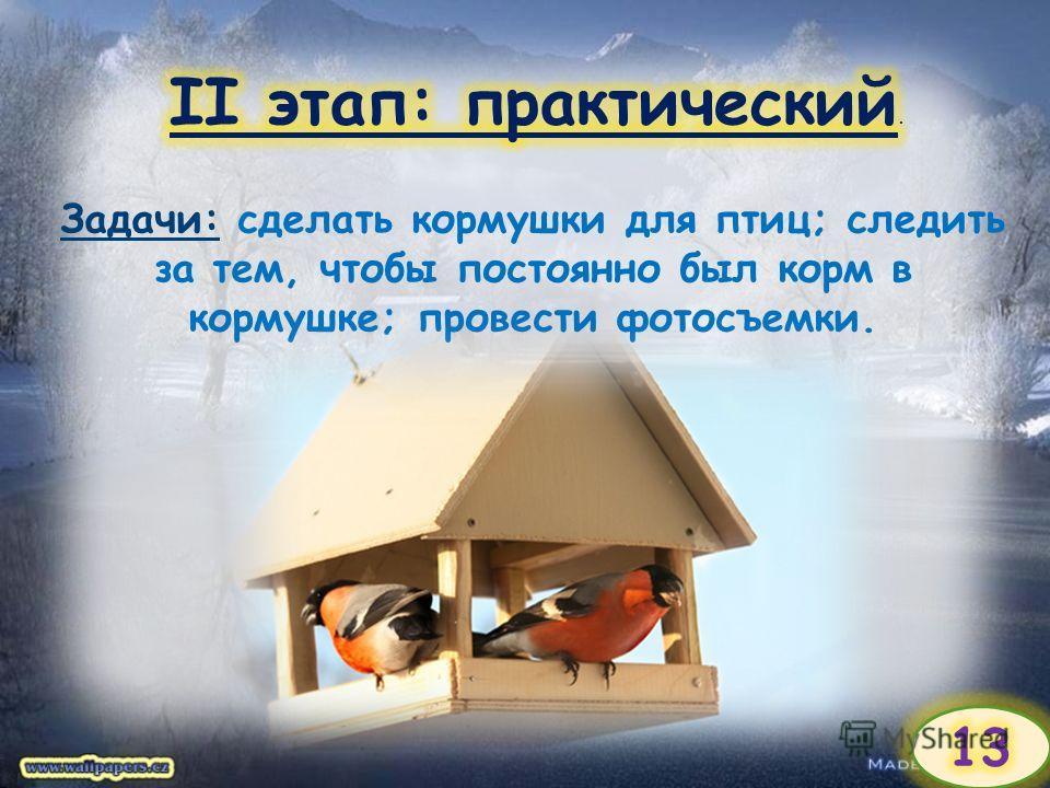 Задачи: сделать кормушки для птиц; следить за тем, чтобы постоянно был корм в кормушке; провести фотосъемки.