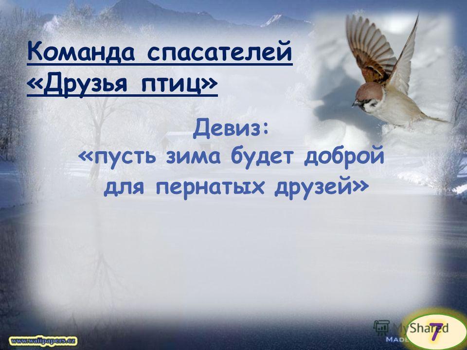 Команда спасателей «Друзья птиц» Девиз: «пусть зима будет доброй для пернатых друзей »