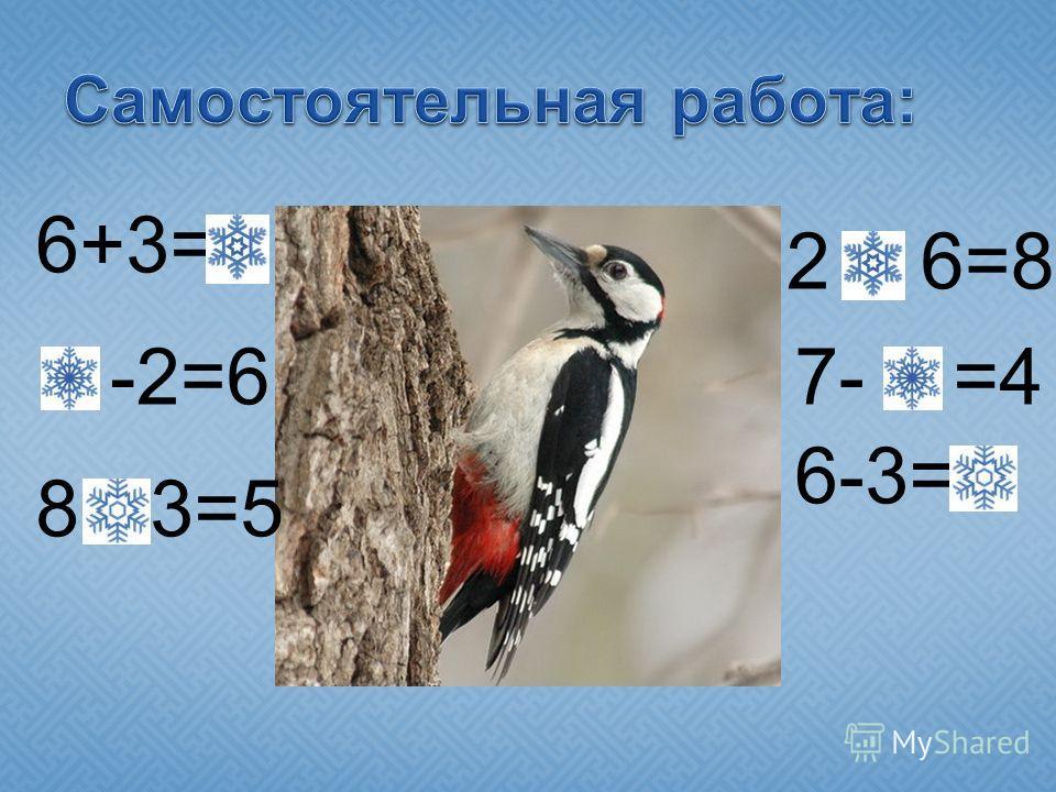 6+3=9 8 -2=6 8 - 3=5 2 + 6=8 7- 3 =4 6-3=3