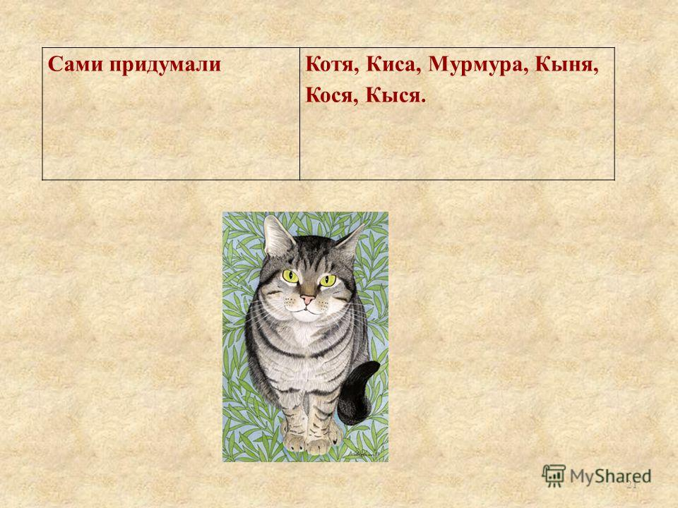 Сами придумалиКотя, Киса, Мурмура, Кыня, Кося, Кыся. 21