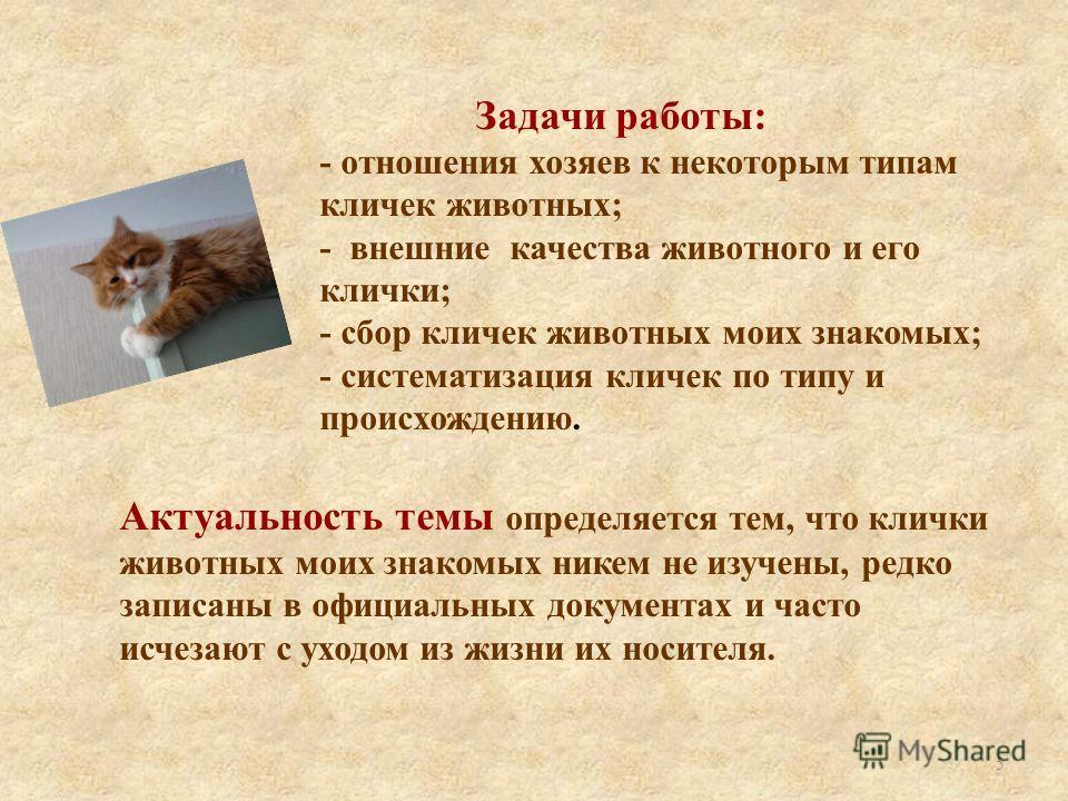 Задачи работы: - отношения хозяев к некоторым типам кличек животных; - внешние качества животного и его клички; - сбор кличек животных моих знакомых; - систематизация кличек по типу и происхождению. Актуальность темы определяется тем, что клички живо