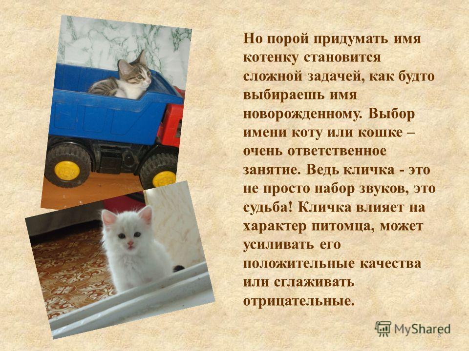 Но порой придумать имя котенку становится сложной задачей, как будто выбираешь имя новорожденному. Выбор имени коту или кошке – очень ответственное занятие. Ведь кличка - это не просто набор звуков, это судьба! Кличка влияет на характер питомца, може