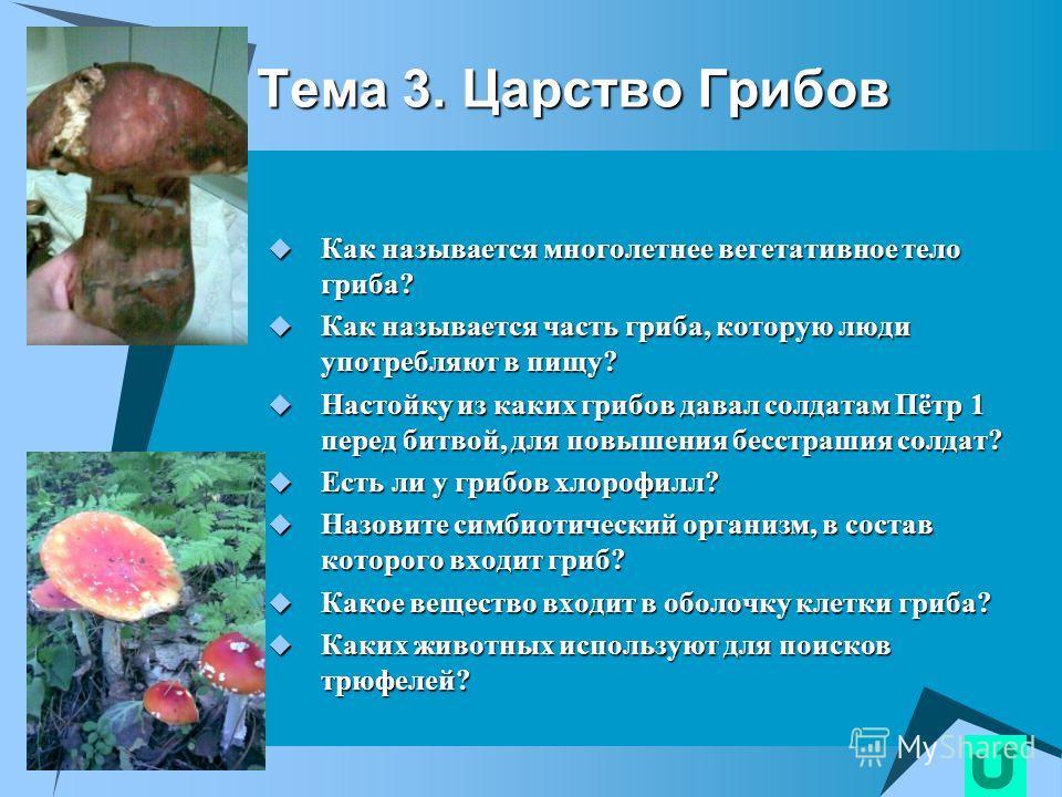 Тема 2. Царство Прокариот Как с Греческого языка переводится «бактерия»? Как с Греческого языка переводится «бактерия»? Какие организмы относят к прокариотам? Какие организмы относят к прокариотам? Перечислите все формы бактериальной клетки? Перечисл