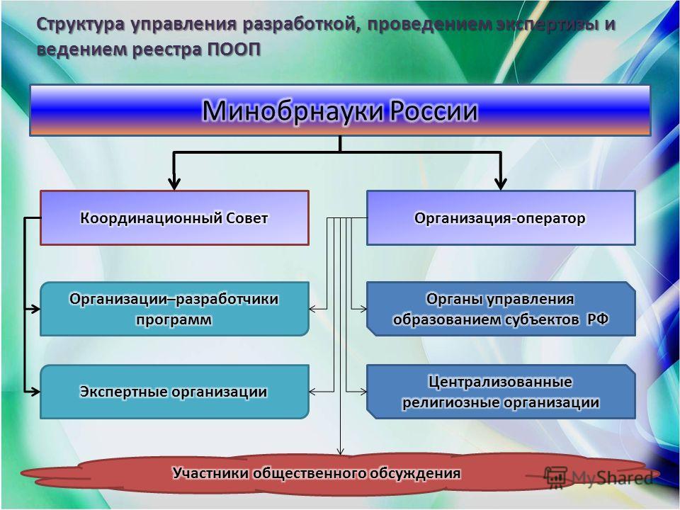 Структура управления разработкой, проведением экспертизы и ведением реестра ПООП