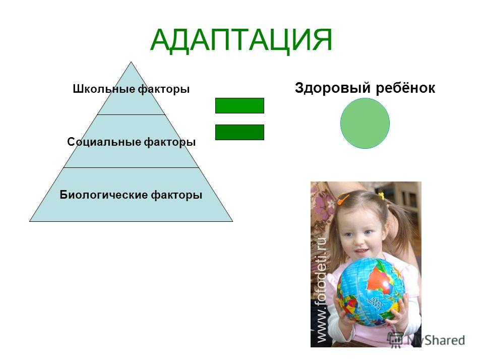 АДАПТАЦИЯ Школьные факторы Социальные факторы Биологические факторы Здоровый ребёнок
