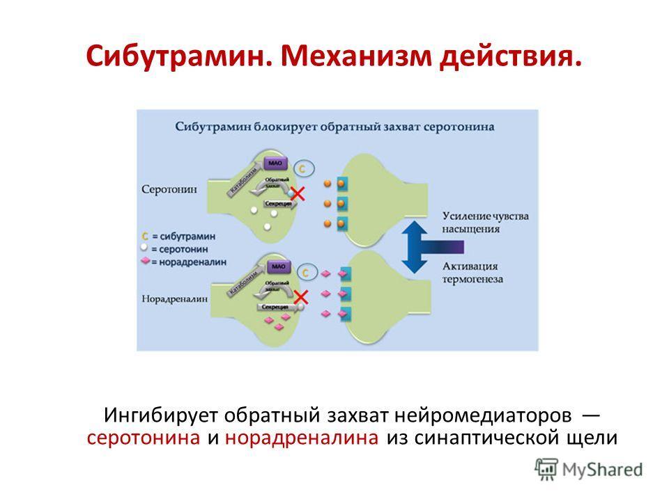 Сибутрамин. Механизм действия. Ингибирует обратный захват нейромедиаторов серотонина и норадреналина из синаптической щели