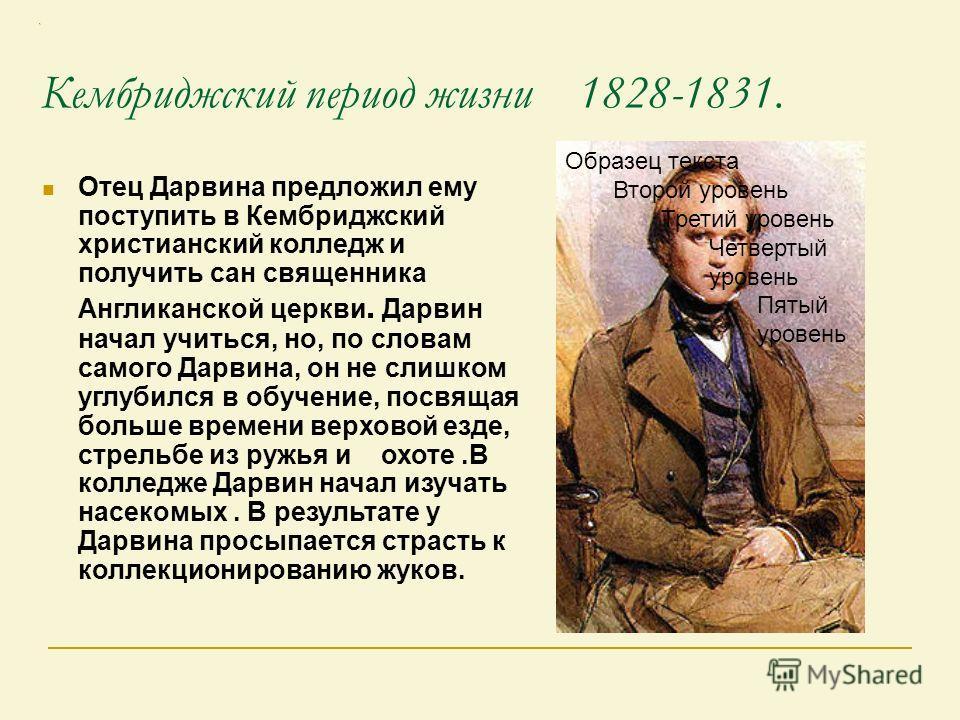 Кембриджский период жизни 1828-1831. Отец Дарвина предложил ему поступить в Кембриджский христианский колледж и получить сан священника Англиканской церкви. Дарвин начал учиться, но, по словам самого Дарвина, он не слишком углубился в обучение, посвя