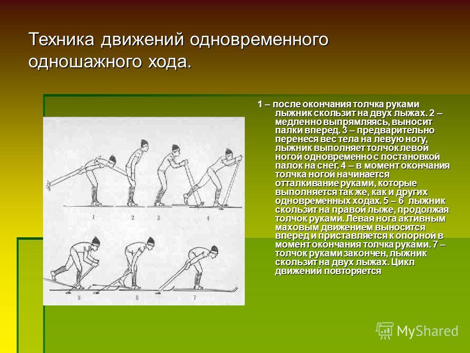 Техника движений одновременного одношажного хода. 1 – после окончания толчка руками лыжник скользит на двух лыжах. 2 – медленно выпрямляясь, выносит палки вперед. 3 – предварительно перенеся вес тела на левую ногу, лыжник выполняет толчок левой ногой