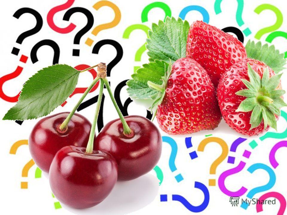 Плод содержит семена