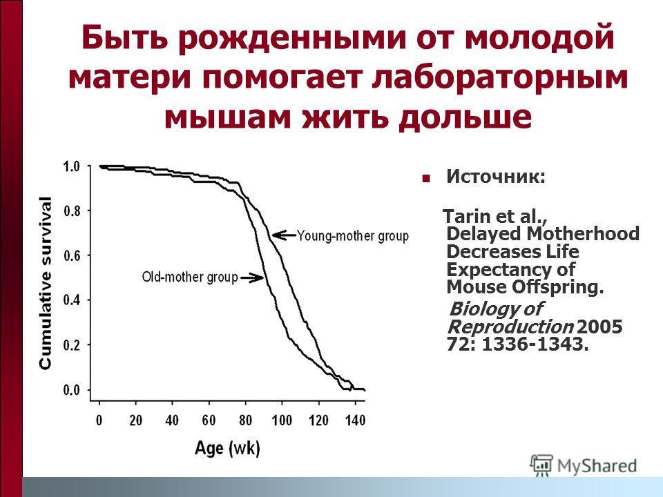 Быть рожденными от молодой матери помогает лабораторным мышам жить дольше Источник: Tarin et al., Delayed Motherhood Decreases Life Expectancy of Mouse Offspring. Biology of Reproduction 2005 72: 1336-1343.