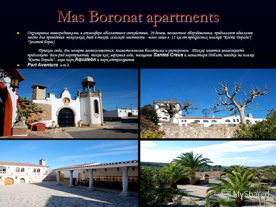 Mas Boronat apartments Окруженные виноградниками, в атмосфере абсолютного спокойствия, 29 домов, полностью оборудованные, предлагают идеальное место для проведения нескольких дней в тихой, сельской местности - всего лишь в 12 км от прекрасных пляжей