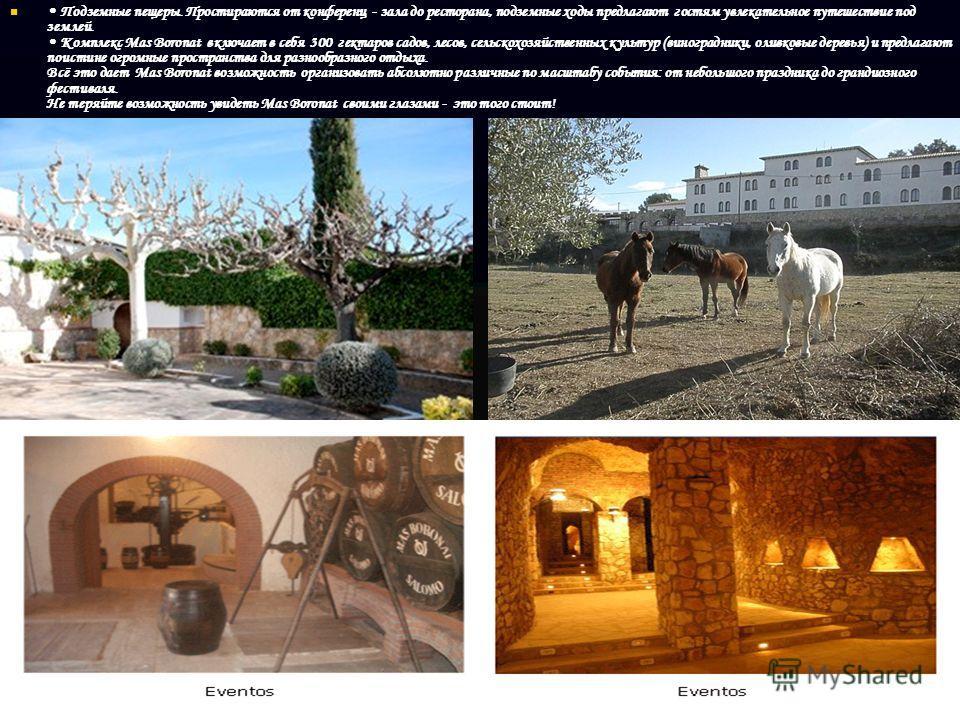 Подземные пещеры. Простираются от конференц - зала до ресторана, подземные ходы предлагают гостям увлекательное путешествие под землей. Комплекс Mas Boronat включает в себя 300 гектаров садов, лесов, сельскохозяйственных культур (виноградники, оливко