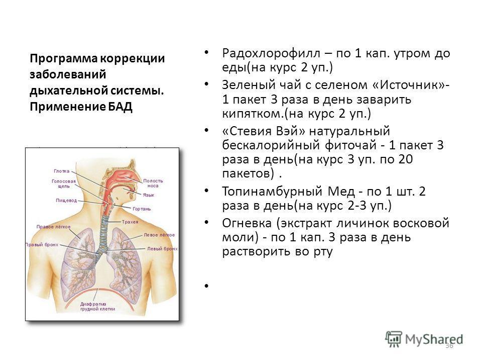 Программа коррекции заболеваний дыхательной системы. Применение БАД Радохлорофилл – по 1 кап. утром до еды(на курс 2 уп.) Зеленый чай с селеном «Источник»- 1 пакет 3 раза в день заварить кипятком.(на курс 2 уп.) «Стевия Вэй» натуральный бескалорийный