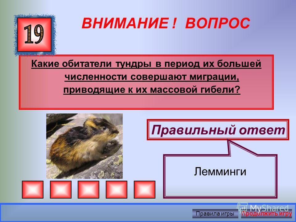 ВНИМАНИЕ ! ВОПРОС В 1998 году в Горно-Хадытинский заказник завезли животных, которые вымерли в нашем округе 10 тысяч лет назад. Какие это животные?? Правильный ответ Овцебыки и бизоны Правила игрыПродолжить игру