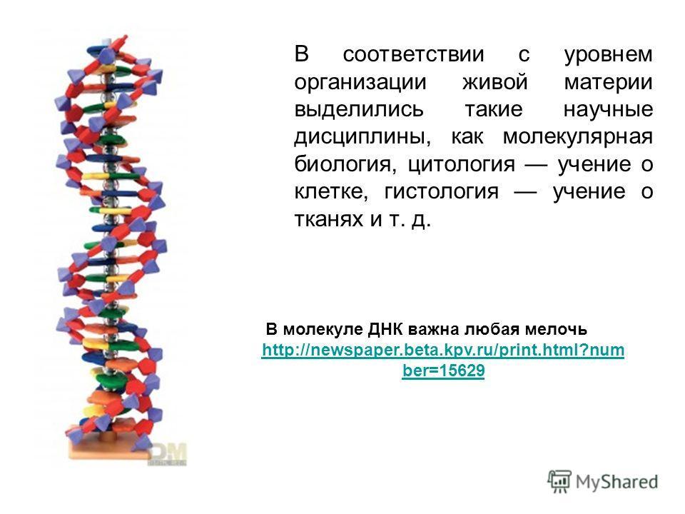В соответствии с уровнем организации живой материи выделились такие научные дисциплины, как молекулярная биология, цитология учение о клетке, гистология учение о тканях и т. д. В молекуле ДНК важна любая мелочь http://newspaper.beta.kpv.ru/print.html