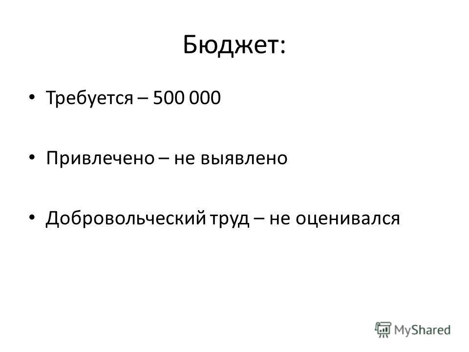 Бюджет: Требуется – 500 000 Привлечено – не выявлено Добровольческий труд – не оценивался