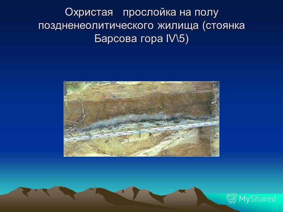 Охристая прослойка на полу поздненеолитического жилища (стоянка Барсова гора IV\5)