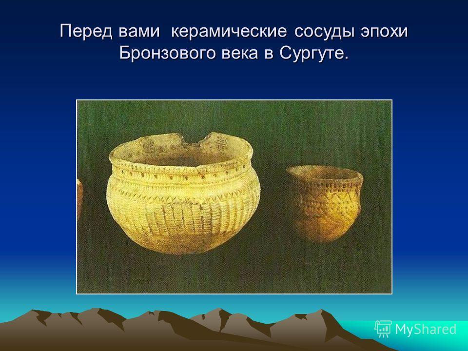 Перед вами керамические сосуды эпохи Бронзового века в Сургуте.