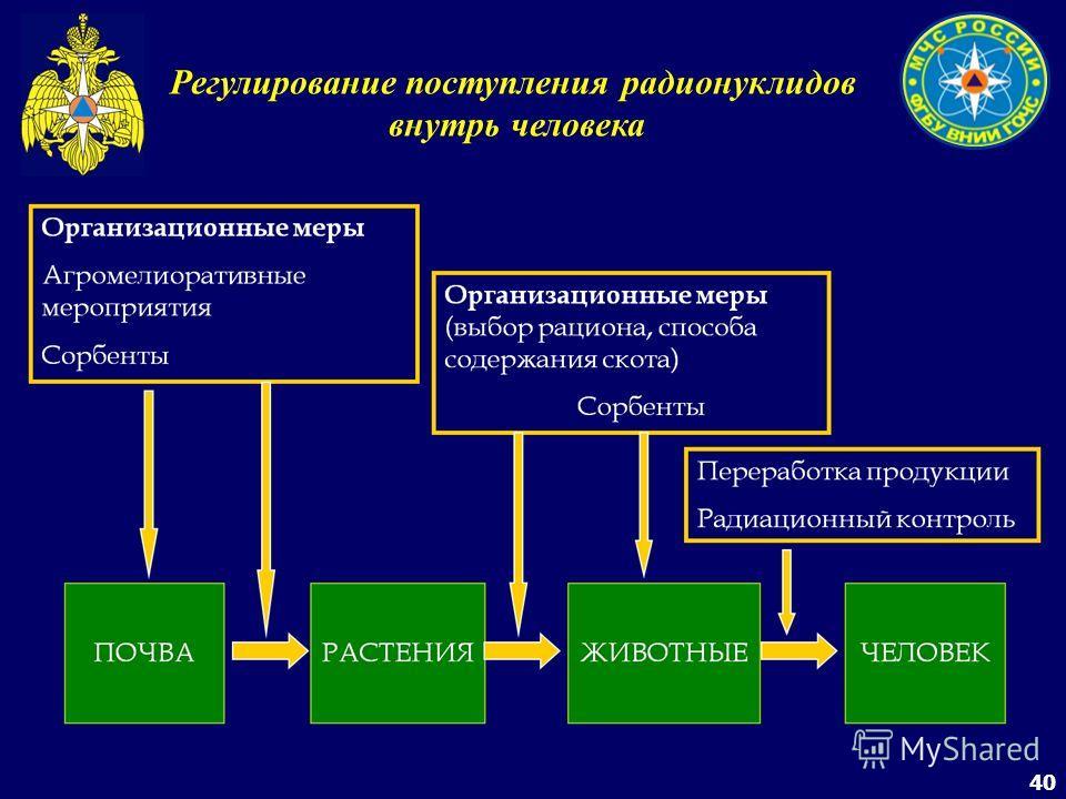40 Регулирование поступления радионуклидов внутрь человека