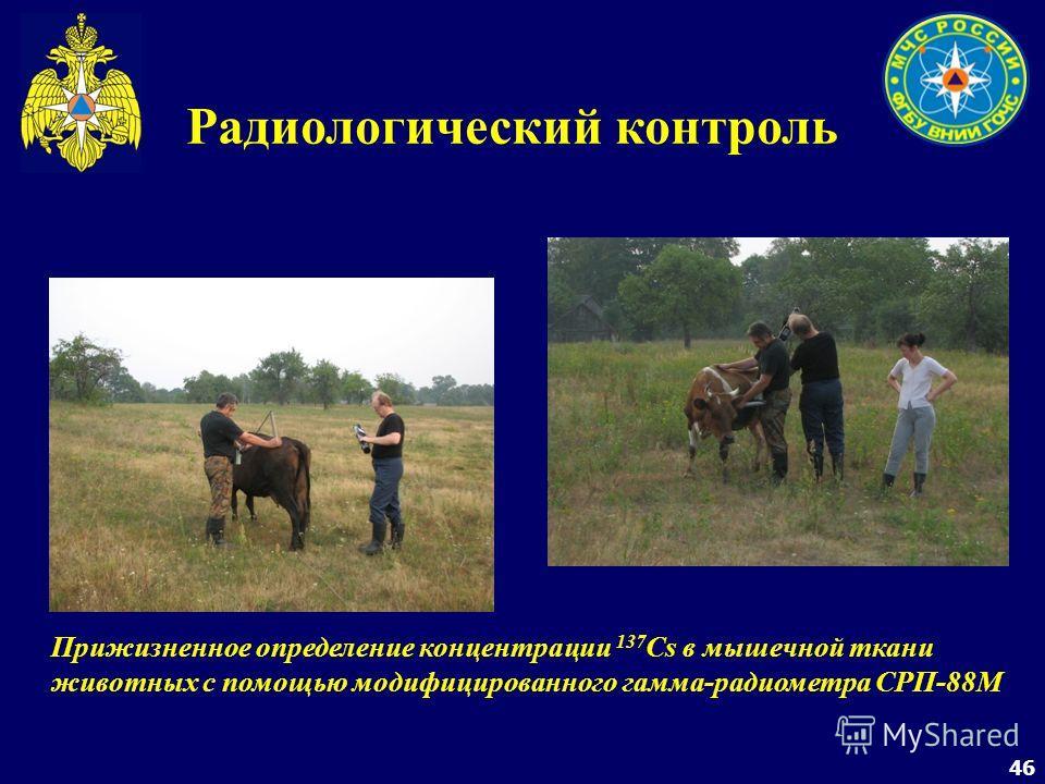 46 Радиологический контроль Прижизненное определение концентрации 137 Cs в мышечной ткани животных с помощью модифицированного гамма-радиометра СРП-88М