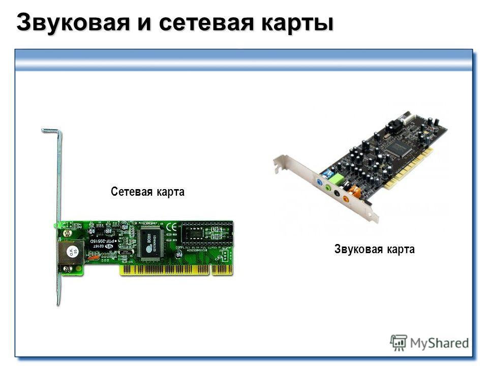 Звуковая и сетевая карты Сетевая карта Звуковая карта