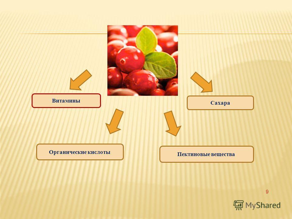 Витамины Органические кислоты Пектиновые вещества Сахара 9