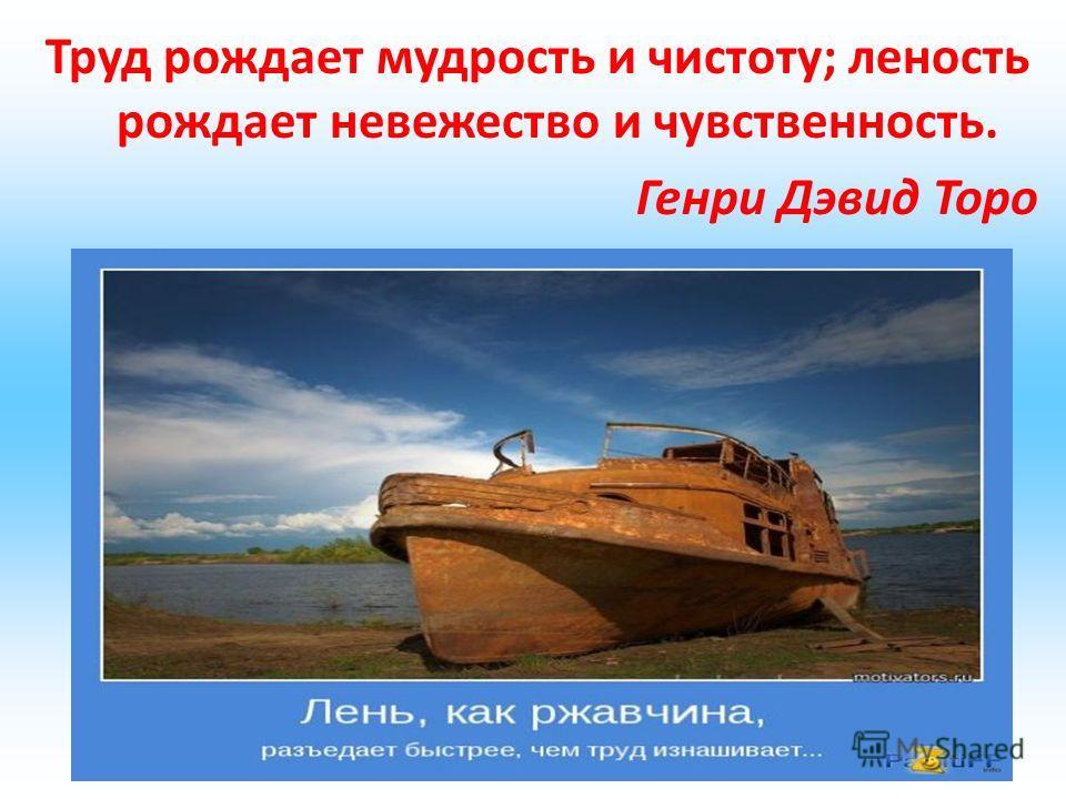 Труд рождает мудрость и чистоту; леность рождает невежество и чувственность. Генри Дэвид Торо