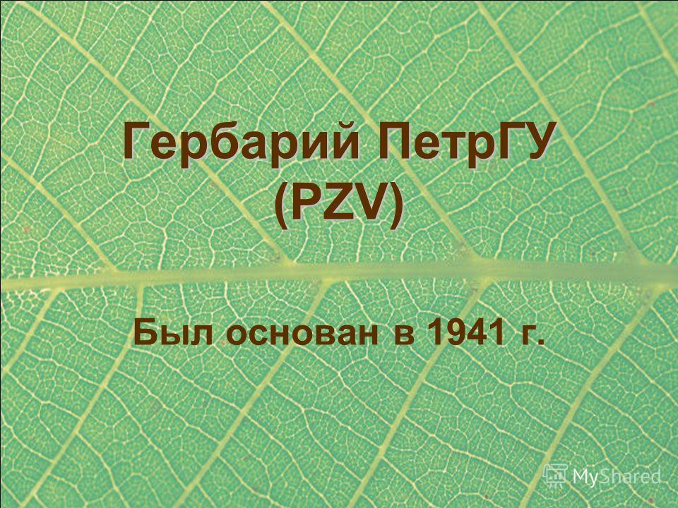 Гербарий ПетрГУ (PZV) Был основан в 1941 г.