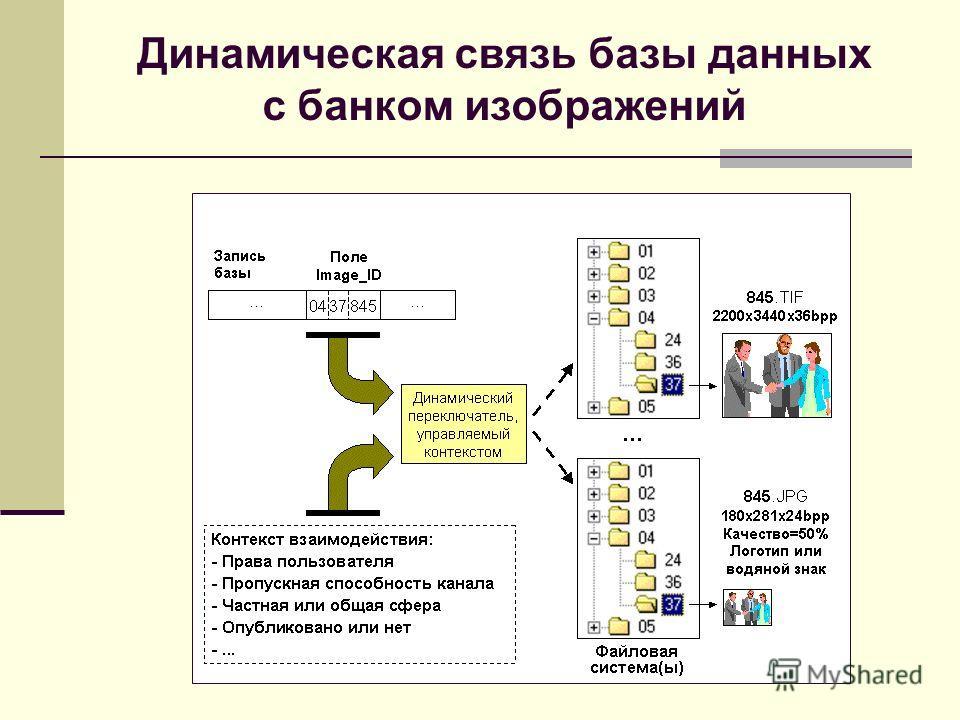 Динамическая связь базы данных с банком изображений
