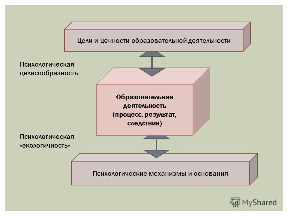 Психологические механизмы и основания Образовательная деятельность (процесс, результат, следствия) Цели и ценности образовательной деятельности Психологическая целесообразность Психологическая «экологичность»